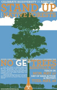 Protest in Asheville ~ GE Trees