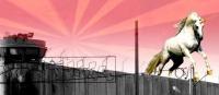 http://tranzmissionprisonproject.tumblr.com/