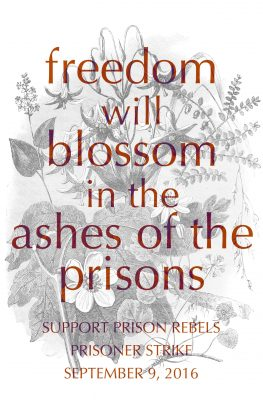 supportprisonerresistance.noblogs.org