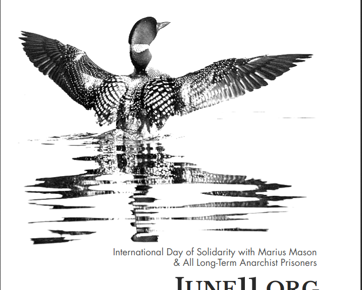 june11 loon sticker