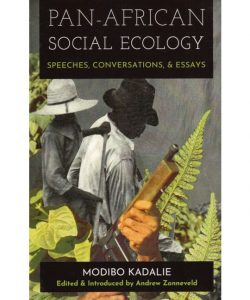 "Book cover of ""Pan-African Social Ecology"""